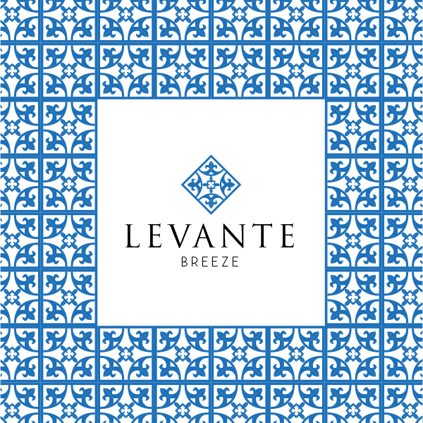 DISEÑO DE IDENTIDAD CORPORATIVA PARA LEVANTE BREEZE
